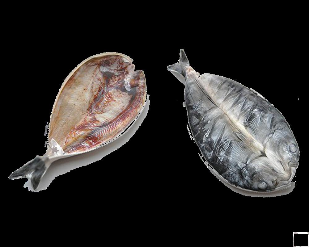 Cá Hôkê- Hoke fish