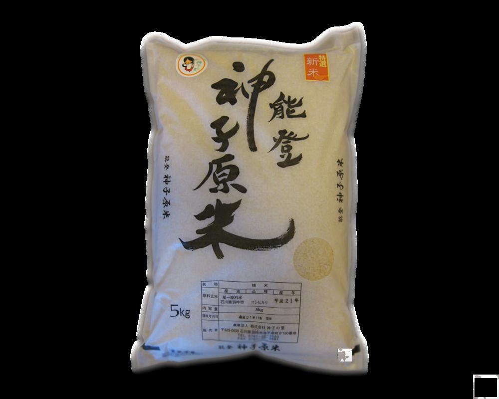 Gạo giống Nhật
